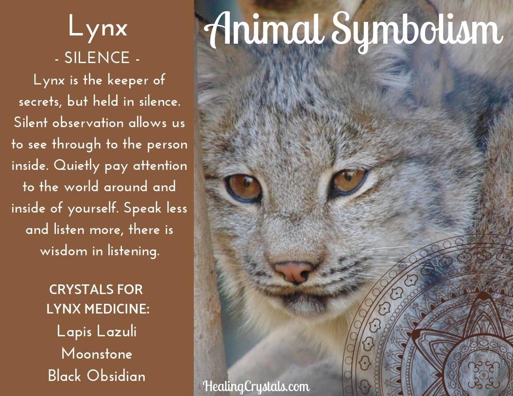 Animal Totems - Animal Medicine Lynx
