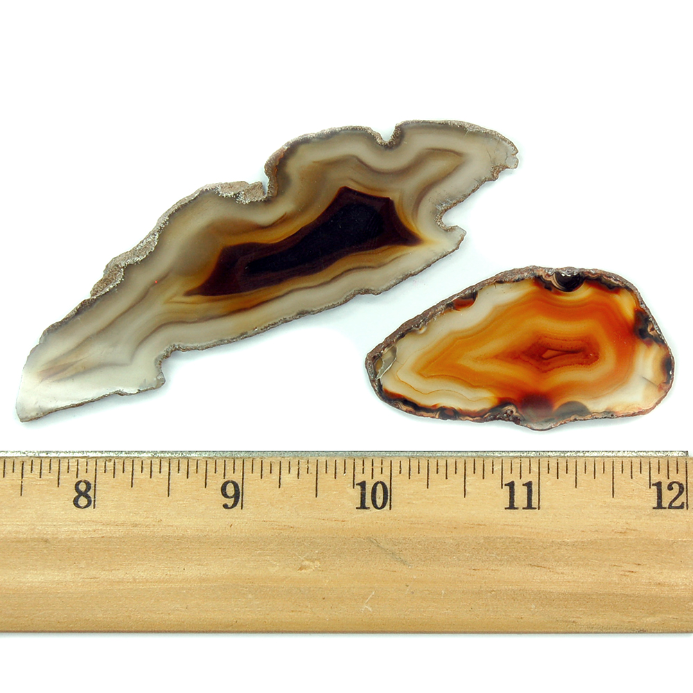 Agate Natural Slices (Brazil)