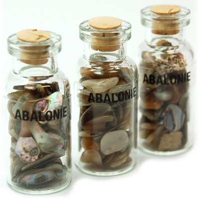 Discontinued - Abalone Shell in a Bottle (India)