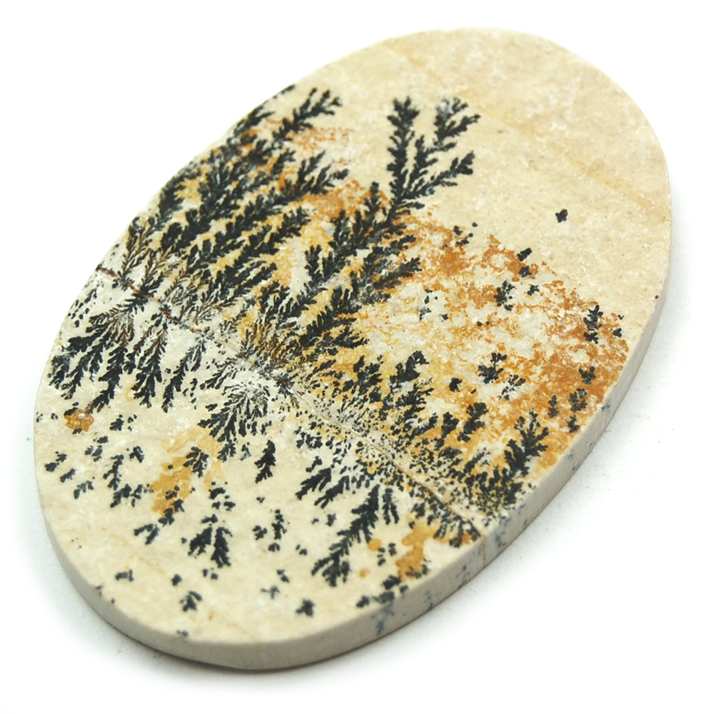Dendrite on Marl Cabochons