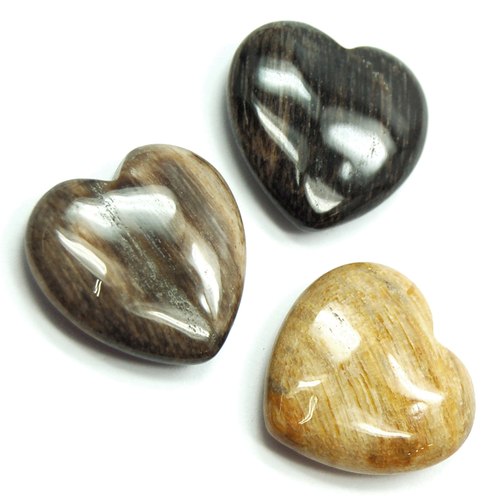 Hearts - Petrified Wood Heart (China)