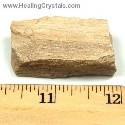 Natural Petrified Wood - Fossilized Wood photo 10