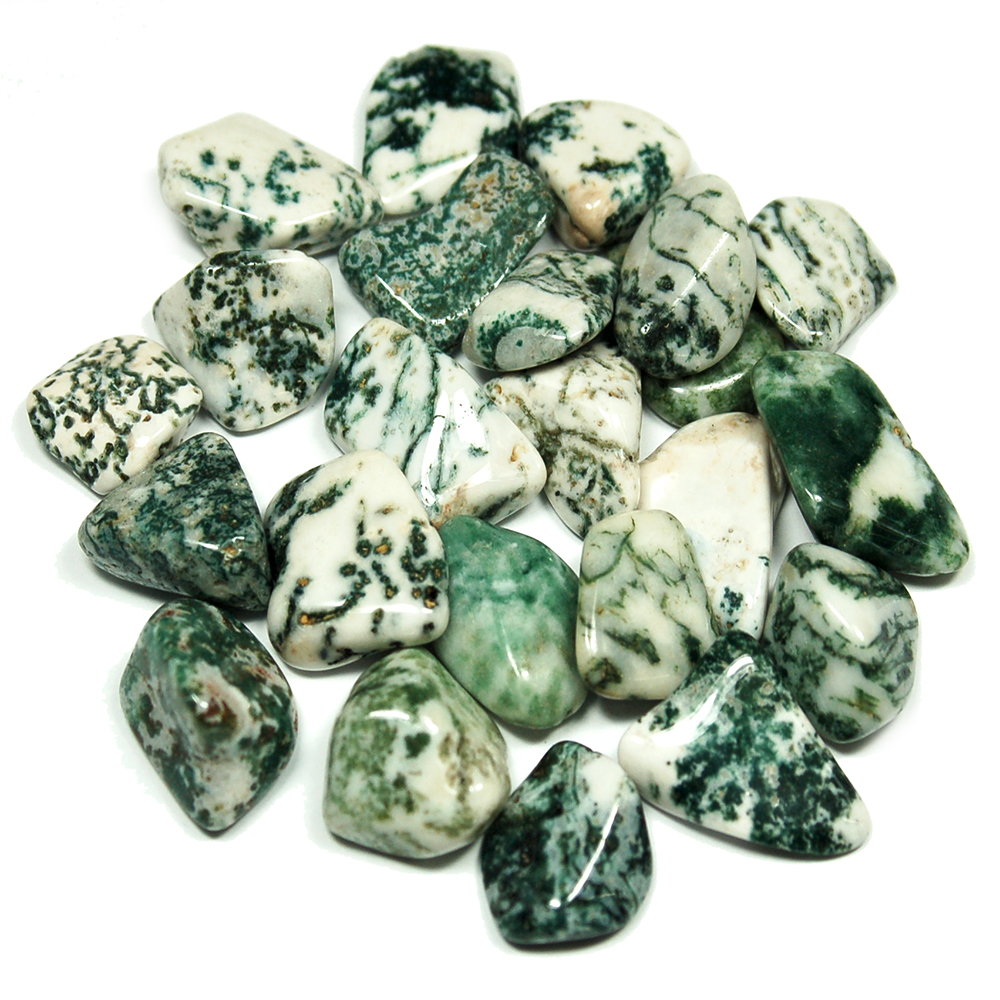 Tumbled Tree Agate