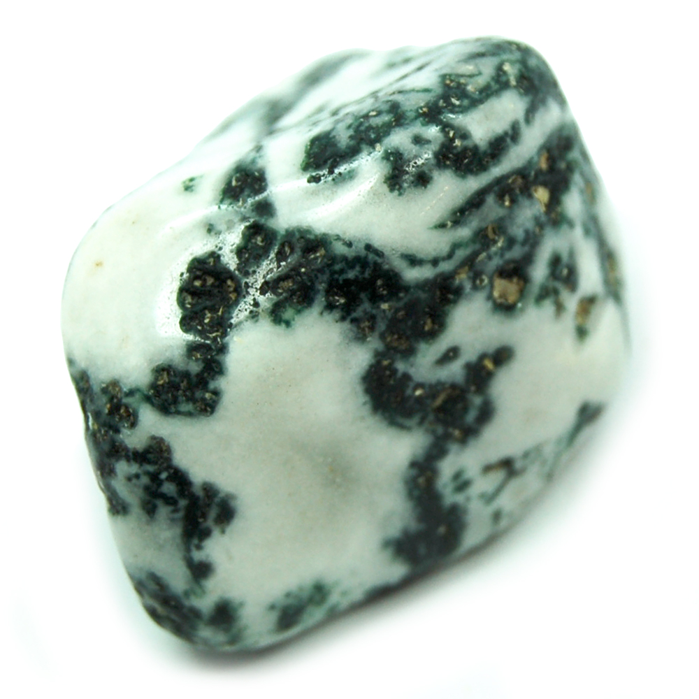 Tumbled Tree Agate - Tumbled Stones photo 5