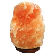 Halite - Salt Lamps 4-20 Lbs.