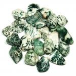 Tumbled Tree Agate (India) - Tumbled Stones