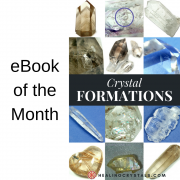 eBook Special - Book of the Month & Discounted Bundle